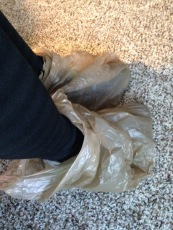 This is the moment I lost it. Bags on my feet? Are we on candid camera?